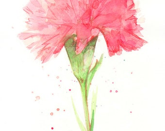 Fine art watercolor painting, flower art, red CARNATION WATERCOLOR PRINT, giclee print, flower interest