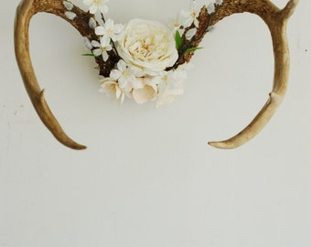 Vintage Deer Antlers with White Ivory Flowers - Floral Wedding Pussywillow Wall Hanging Taxidermy 6 Point Boho Home Decor Decoration