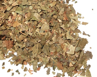 BIRCH LEAF - Organic, Dried Herb - Uses Include: Incense, Tea, Potpourri, Infused Oil