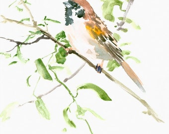 House Sparrow painting art , 12 X 9 in  original watercolor painting