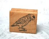 Parrot Rubber STamp by The Stamp Pad Co, Vintage Rubber STamp, Parrot STamp, Bird STamp, Retired STamp, Animal STamp, Fowl STamp, REalistic
