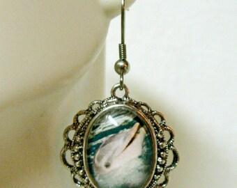 Dolphin earrings - SAP06-001