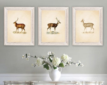 Farmhouse Decor Wall French Country