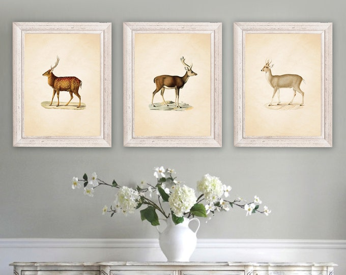 French Country Wall Art vintage home prints - rhondavous designs