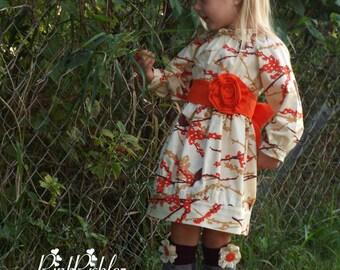 Fall long sleeve dress, girls peasant dress, bird dress, Thanksgiving dress, autumn dress, sparrow fall dress, toddler fall dress, baby