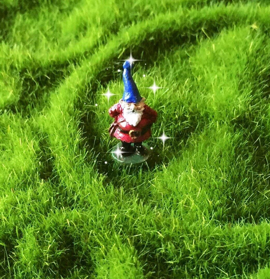 Micro Mini Gnome Fairy Garden Gnome Tiny Gnome Miniature