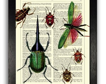 Insect Group Red / Green Simplistic Home Decor, Office Art Print, Bug Wall Poster, Kitchen Decor, Unique Gift for Men, Vintage 8 x 10 inches