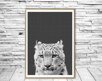 Snow Leopard, Leopard Photo, Leopard Wall Print, Minimalist, Animal Wall Art Print, Modern Wall Art, Black and White, Home Decor, Leopard.