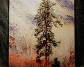 Canyon Pine Large Glass Cutting Board -  12 in x 15 in