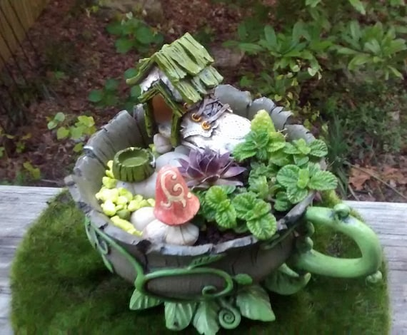 Miniature Fairy Garden Kit w/ Succulent Cuttings, Woodland Teacup ...