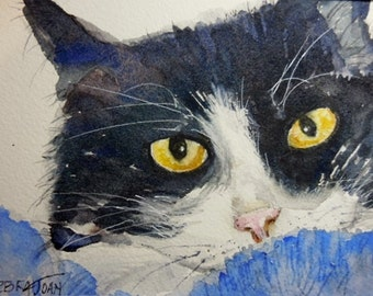 Tuxedo Cat, Watercolor , Original watercolor,