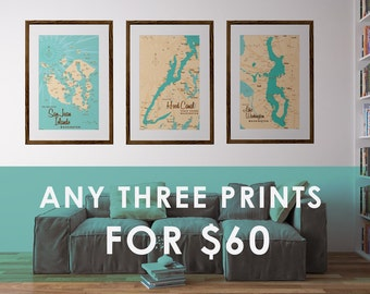Choose Any 3 Prints for 60 Dollars (11x17 or 11x14 only)