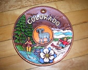 Colorado Souvenir Plate Colorado Wall Decor  SNCO Colorado Souvenir Plate Vintage