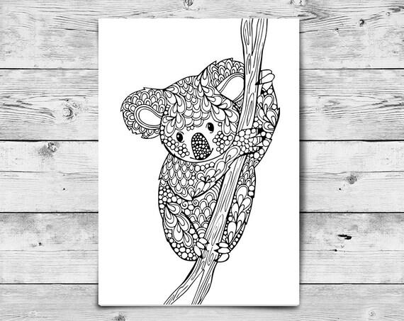 Adult Coloring Page Koala Printable