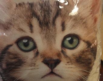 Tabby Cat Mini Cushion