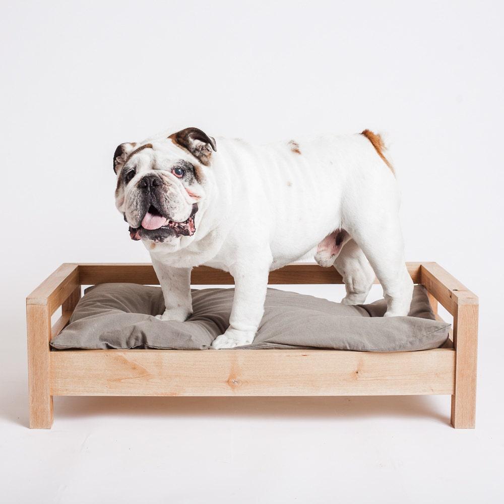 medium dog bed modern dog bed dog furniture elevated dog. Black Bedroom Furniture Sets. Home Design Ideas