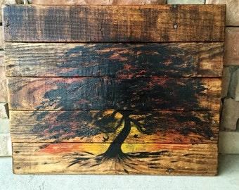 Oak tree and sunset