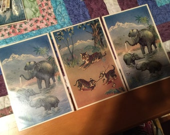 Lot of 3, r. Samaraweera postcards, vintage, great condition