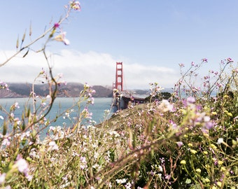 Large San Francisco Wall Art, Golden Gate Bridge Photography, Flower Photo, Large California Print, Wildflowers, Ocean, San Francisco Decor