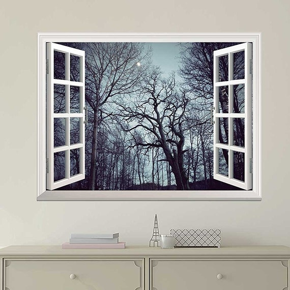 Window Looking Out Into a Forest with Trees Full of Branches