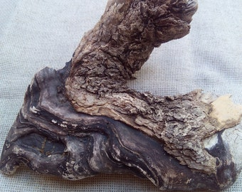 Natural driftwood piece, sea treasure, rustic home decor from beach