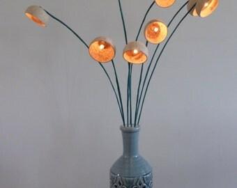 Handmade Illuminated Seed Pod Lamps