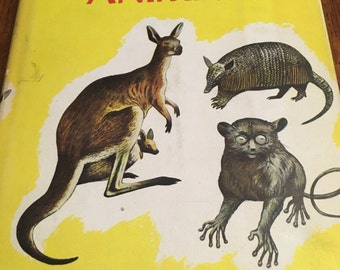 1951 the Real Book about Amazing Animals