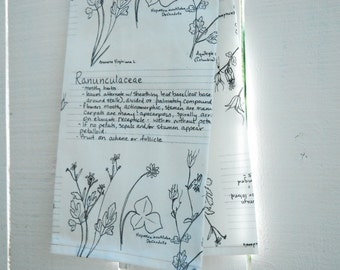 Linen Tea Towel - Ranunculaceae Botanical Sketch