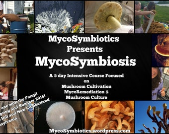 The MycoSymbiosis Intensive F.E.E.