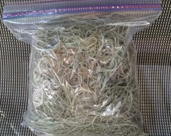 5oz-Live Florida Grown Spanish Moss