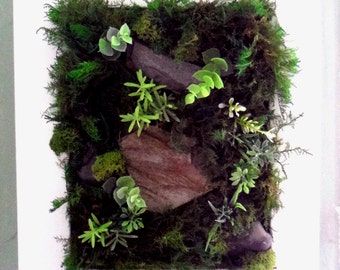 Plant table, green wall, frame plant, green wall, frame, framework, organic artwork bark lichen, plant design, green