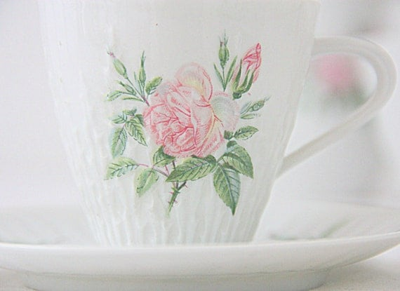 Set of Two Vintage Hutschenreuter Selb Demitasse Cup and Saucer, 'Rosita' Moss Rose Decor, Germany