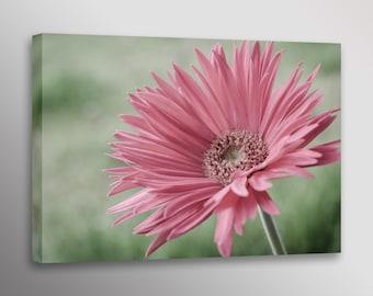 "Pink Gerbera Daisy Flower Photo Wall Art Canvas Print 20""x30"", 24""x36"" & 32""X48"""
