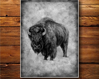 Buffalo Decor,  Bull Illustration, Ox Print, Bison Poster BW374