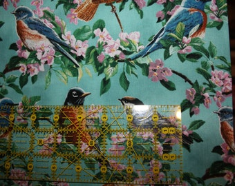 Wild Wings Springs Creative Fabric