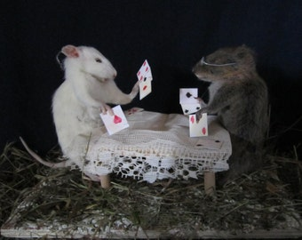 Player rat map taxidermy taxidermy rat cabinet of curiosity oddities