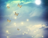 night Sky Backdrop - butterfly with moon and firefly - Printed Fabric Photography Background G1104