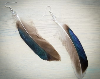Real feather earrings / Feather earrings / Long earrings with Swarovski crystals //  Boho Chic earrings // Hippie Jewelry // Feather jewelry