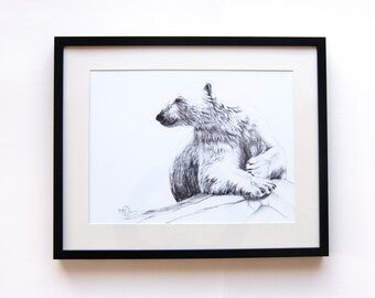 Polar bear smiling 12x18