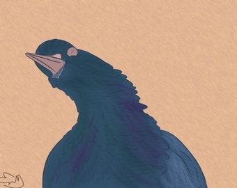 Singing Pigeon Print