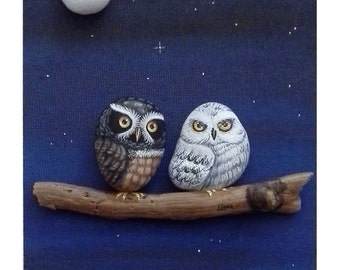 Owls-barn Owls and tawny owls
