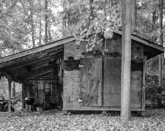 Cabin print, PHOTOGRAPHY, LANDSCAPE, WALL art, trees, nature, wood, picture, art