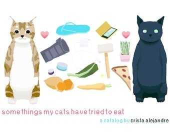 Some Things My Cats Have Tried to Eat