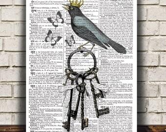 Blackbird poster Bird art Dictionary print Wildlife print RTA1094