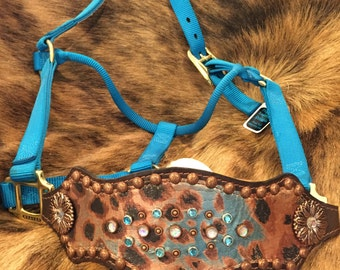 Copper and Turquoise Cheetah Bronc Halter