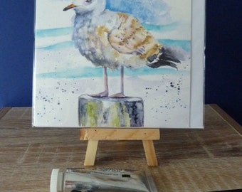 Sea Gull Greetings Card