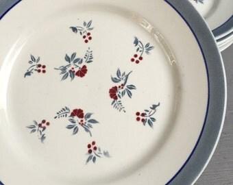 6 plates Digoin Sarreguemines