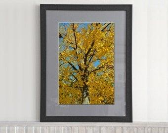 Stylized Trees (003)