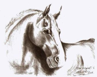 "Print - Horse ~ ""Old Friend"""