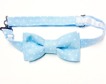 Blue dot bow tie